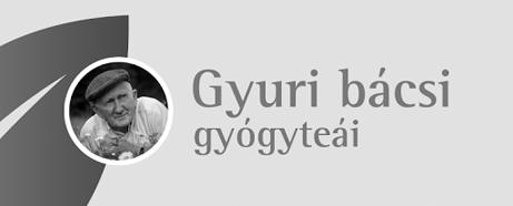 Gyuri bácsi teái