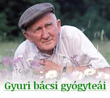 GyuriBacsiGyogyteaiLogo